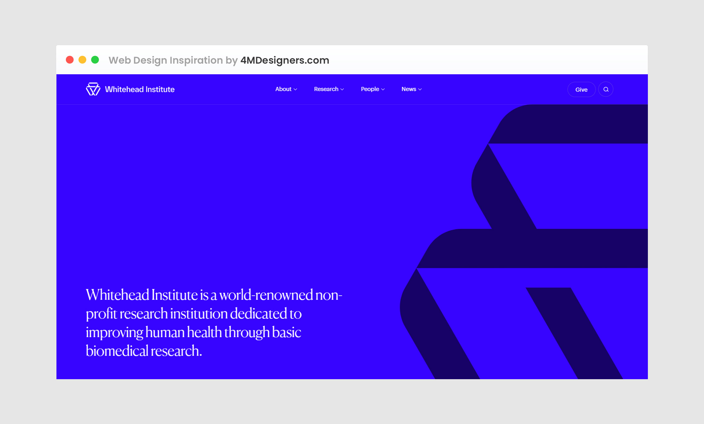 Web Design Company Pakistan