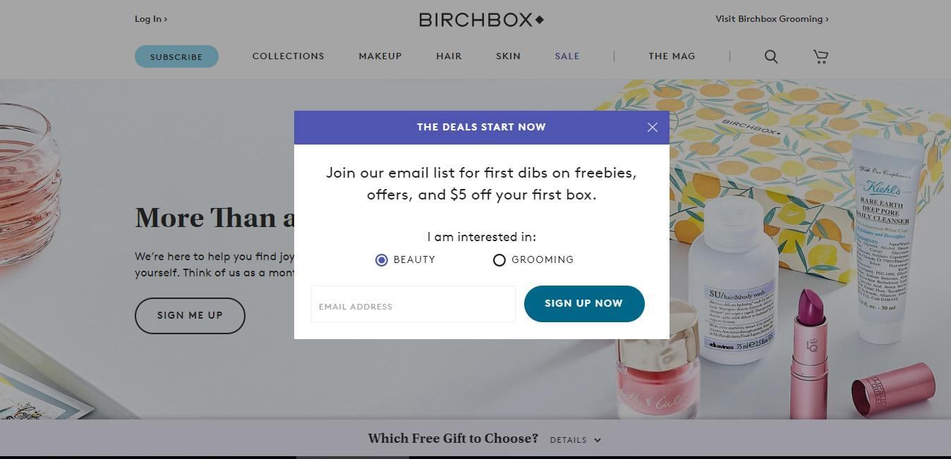 Birchbox CTA Example